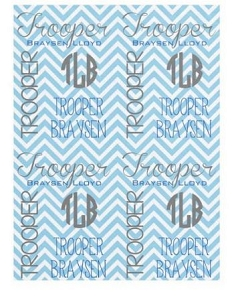 Adorable Minky Chevron design Baby Blanket