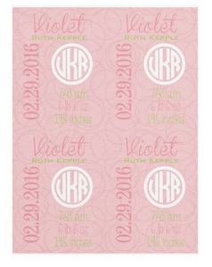 Adorable Minky Pink Birth Announcement Baby Blanket